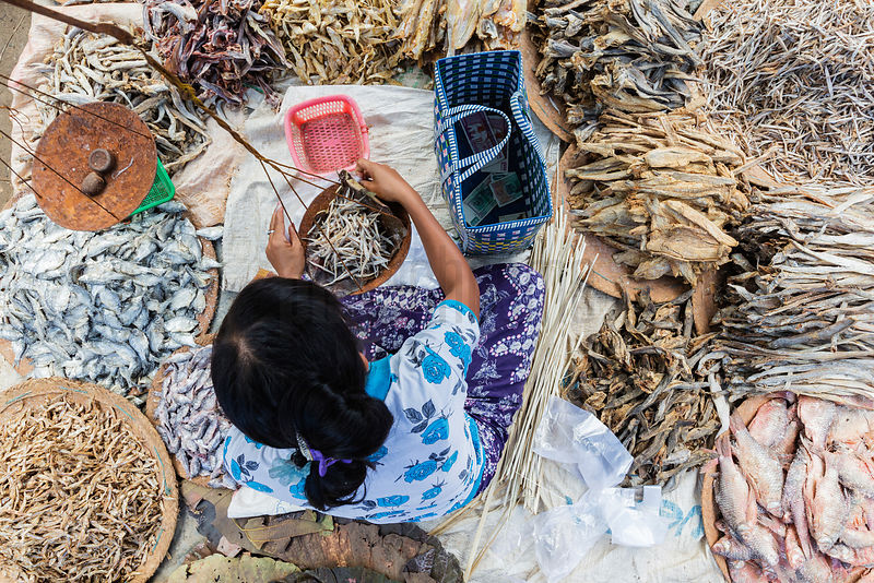 Overhead View of a Woman Selling Dried Fish at Nampar Market