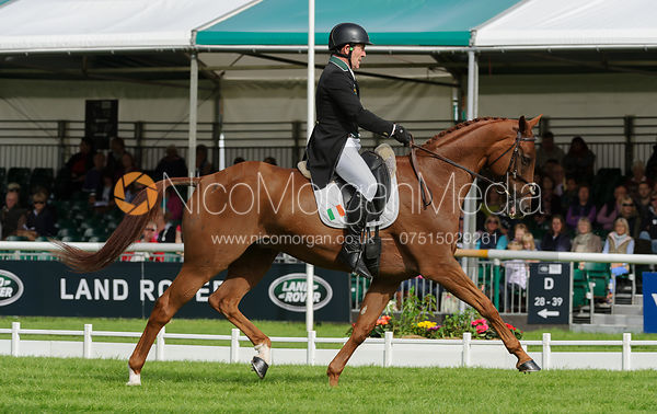 Austin O'Connor and MORNING VENTURE - Burghley 2015