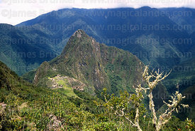 View of Machu Picchu and Huayna Picchu peak from Machu Picchu mountain, Peru
