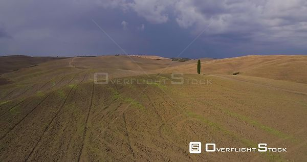 Aerial, beautiful view on tuscan fall landscape with a lonely cypress tree in the middle of fields in Tuscany