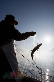 Austria, Mondsee, Fisherman caught a fish in fishing net