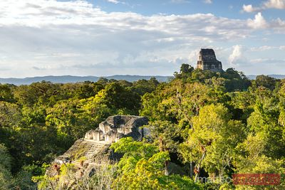 Elevated view of Lost World temple, Tikal, Guatemala