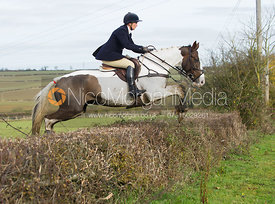 Tiny Clapham jumping a hedge at Town Farm