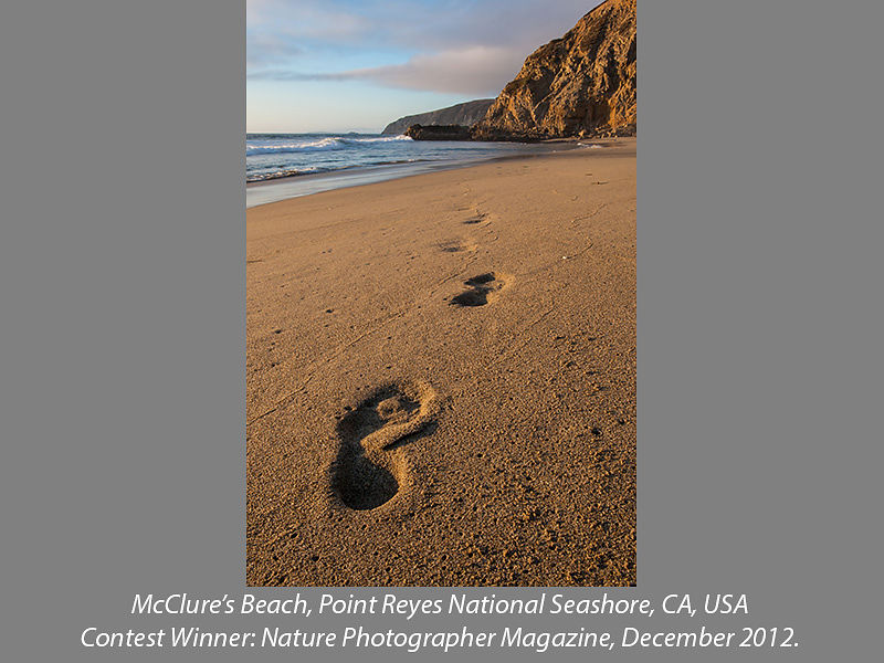 Foot Prints and Hill, McClure's Beach, Point Reyes National Seashore, California, USA