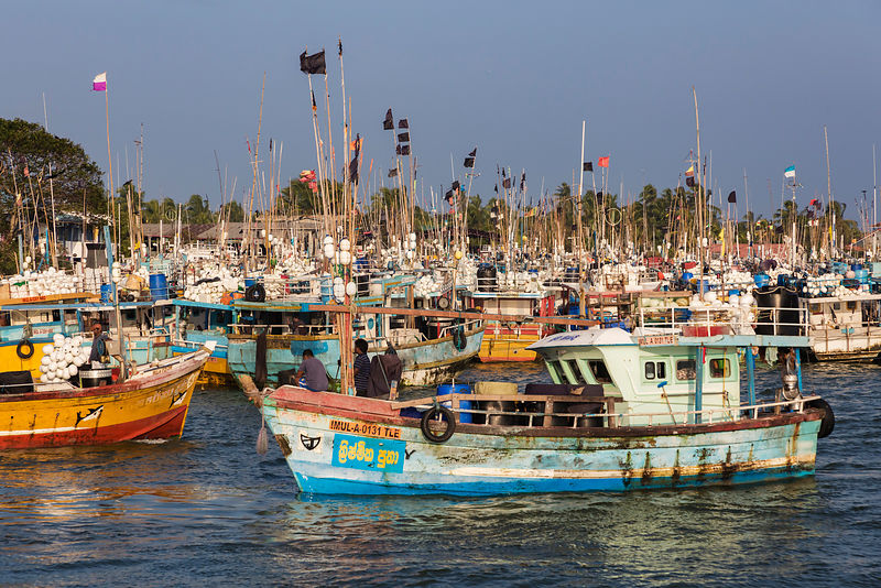 Fishing Boats in the Negombo Lagoon