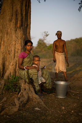 India - Tribals and Land Rights