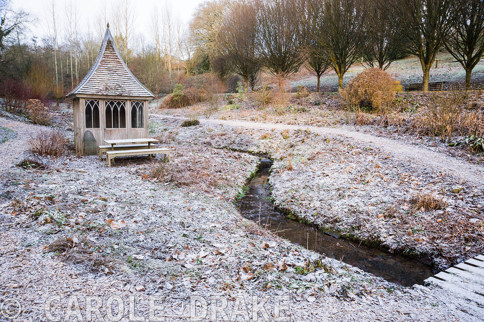 Dormant bog garden with an icing of snow around a wooden summerhouse.
