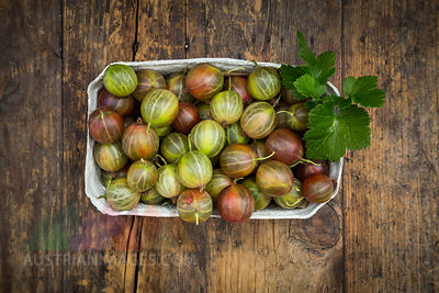 Cardboard box of gooseberries on wood
