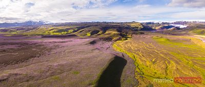 Aerial drone view of lupin field in summer, Iceland