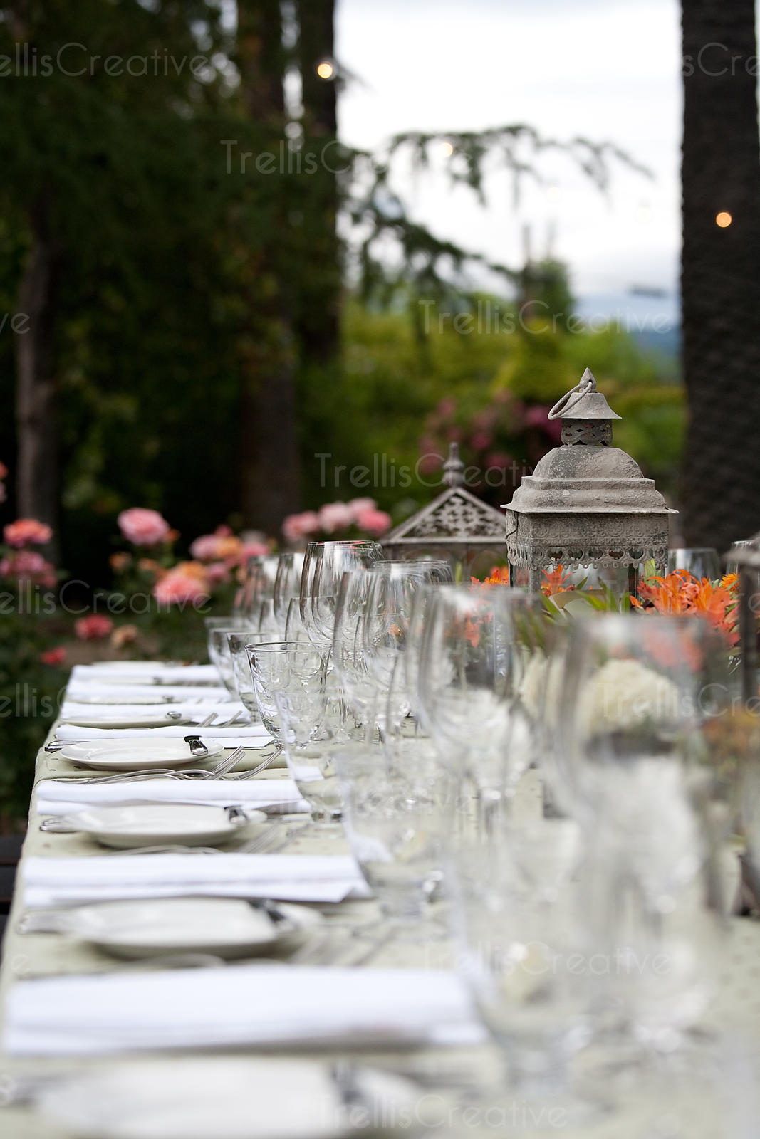 Place settings on elegant dining table in garden
