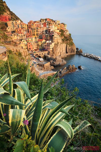 Fishing village of Manarola Cinque Terre Italy
