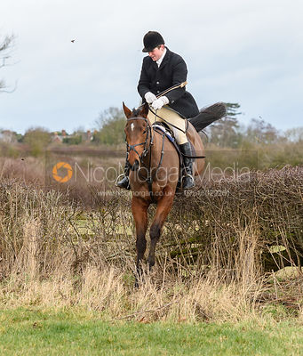 Tom Abel Smith jumping a hedge at Eaton Grange. The Belvoir Hunt at Eaton Grange 7/2