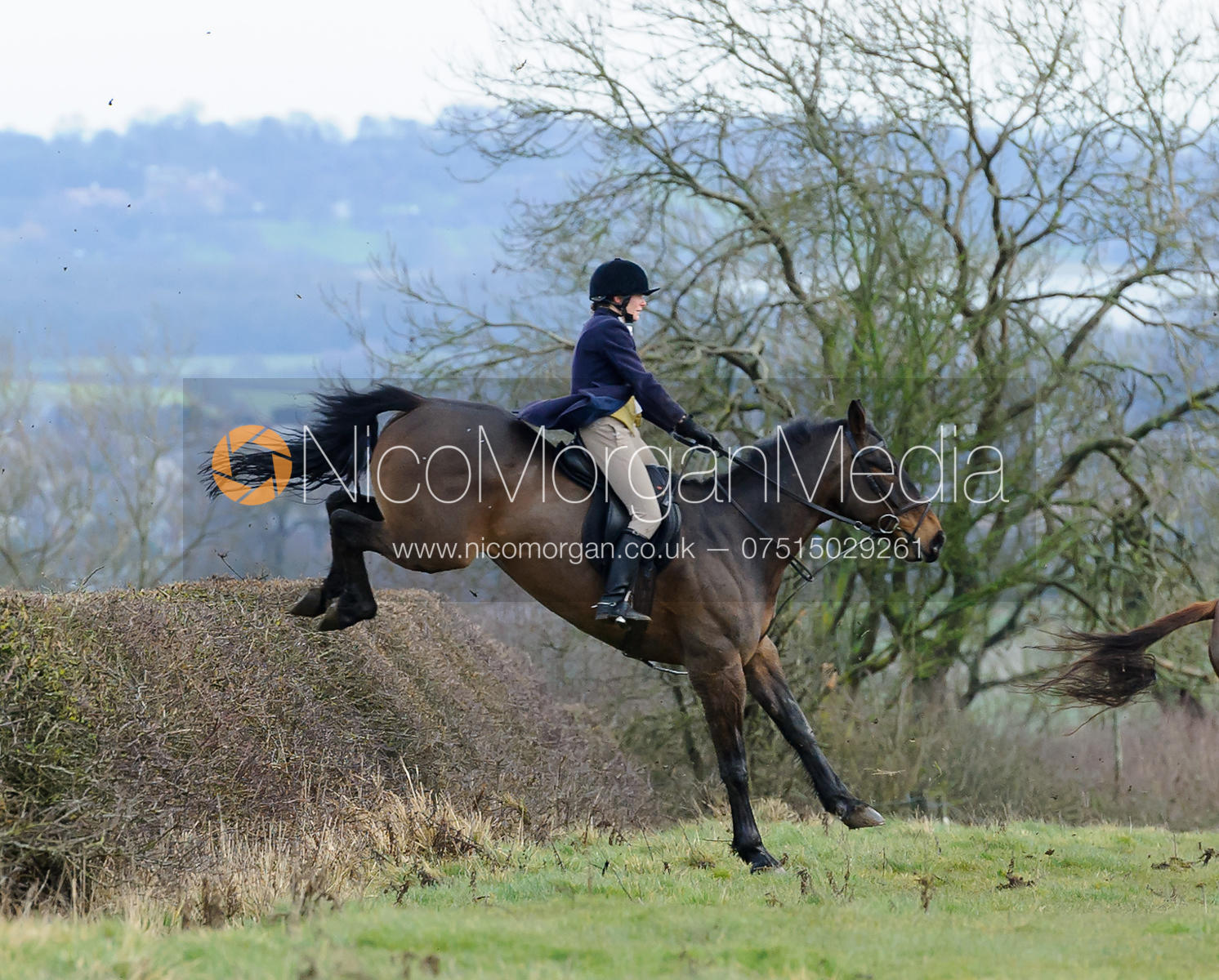 Alice Robb jumping a hedge above Wilson's covert