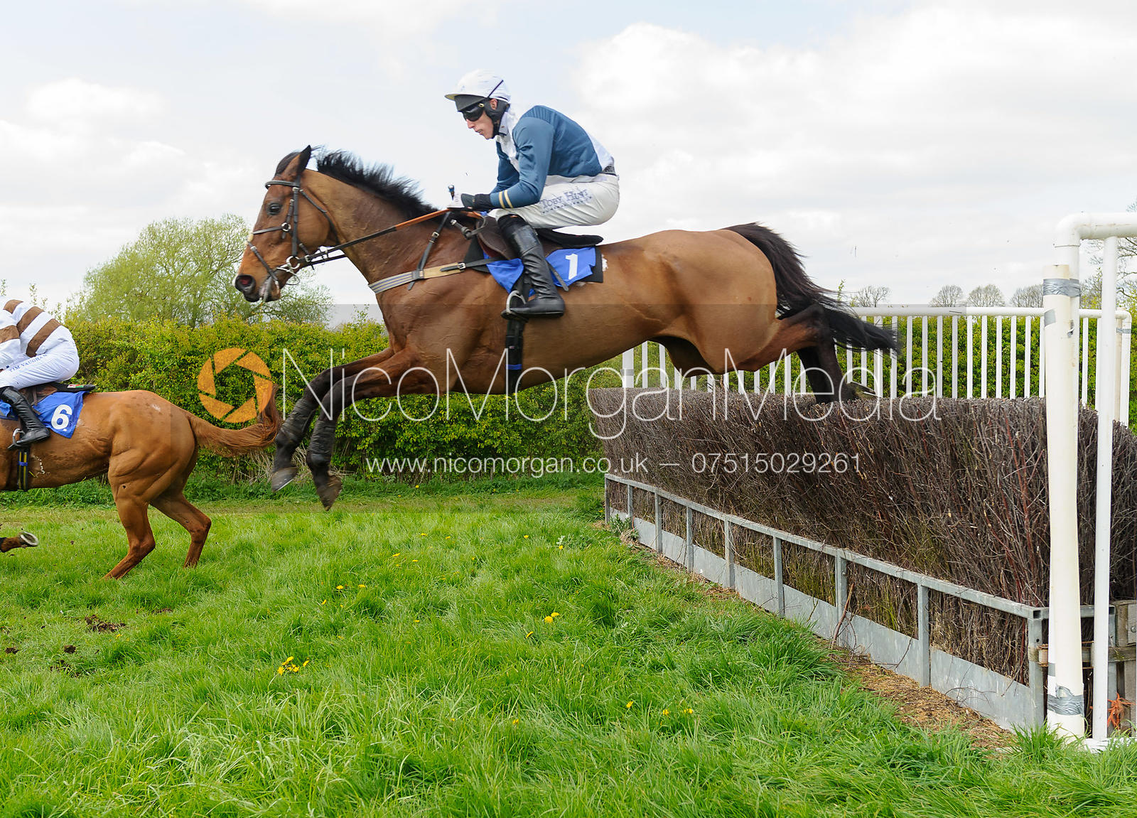 Race 3 Intermediate - South Notts Point-to-Point 2017