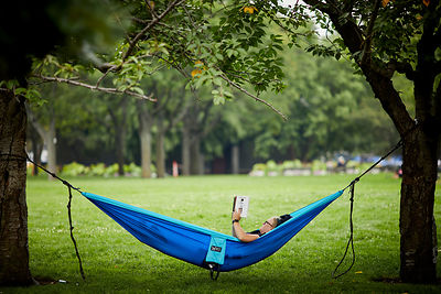 A hammock in the park
