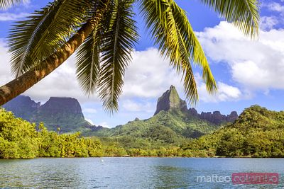 Iconic Opunohu bay, Moorea, French Polynesia