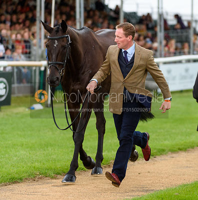 Oliver Townend and MHS KING JOULES at the trot up, Land Rover Burghley Horse Trials 2018