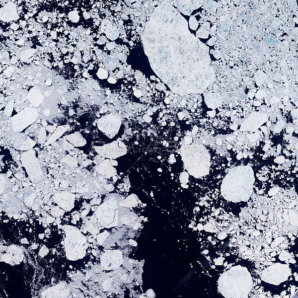 EARTH Arctic Ocean -- 16 Jun 2001 -- For many years, scientists have expected that climate change will be more rapid and dram...