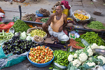 India - Rajasthan - A man selling vegetables on the street in Jaipur