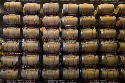 Wine barrels stacked in cellar, Bordeaux Vineyard