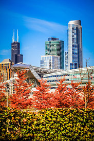 Picture of Chicago in Autumn