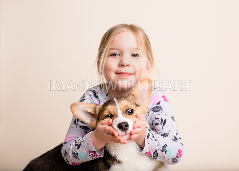 Cute girl holding corgi puppy's face
