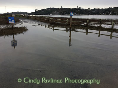 King Tides Flood Petaluma River Entrance