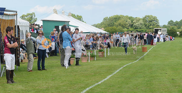 Crowds of spectators - Assam Cup - Rutland Polo Club, 30th Jun 2013.