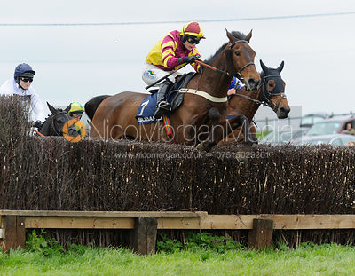 The Fernie  Point-to-point at Dingley 1/5
