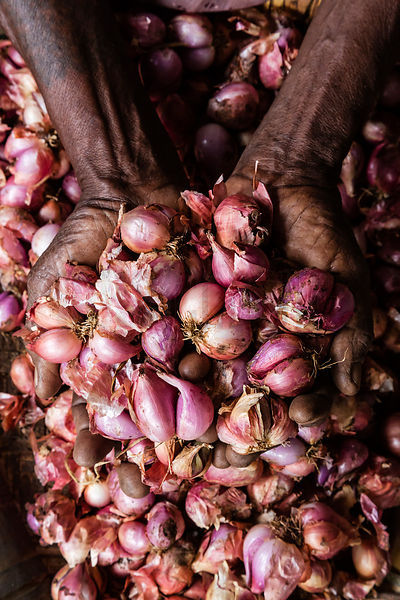 Woman Holding Shallots in her Hands