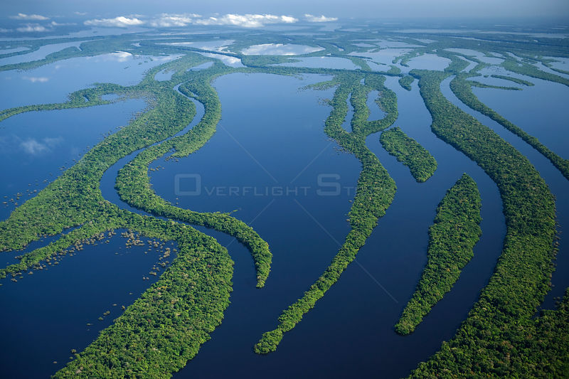 Aerial view of flooded rainforest / varzea, Anavilhanas Archipelago, Rio Negro, Amazonia, Brazil, July 2008