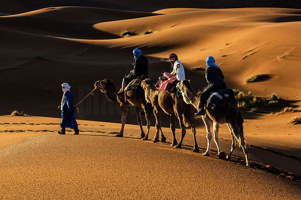 Berber Tribesman Leading Tourists on Camels.
