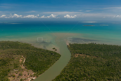 Aerial view of estuarine channel with mangroves at the mouth and some barren patches, and siltation at the mouth of the chann...