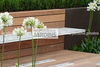 Agapanthus, Bench, Contemporary garden, Perennial, Perennial rhizome, White, Wooden Terrace, Detail, Digital