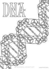 DNA Colouring In #58