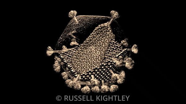 HIV-Virus-Structure-Russell-Kightley-30sec_SEPIA