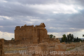 A view of the main temples from the St Vitalis Church, Sbietla Tunisia; Landscape