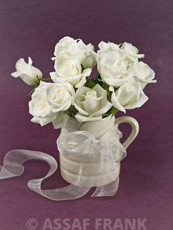 White roses in a jug