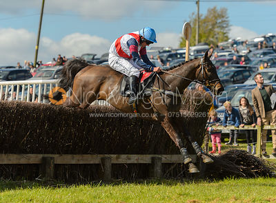 Will Aprahamian and BAYLEY'S DREAM - Novice Riders - Woodland Pytchley at Dingley 15/4
