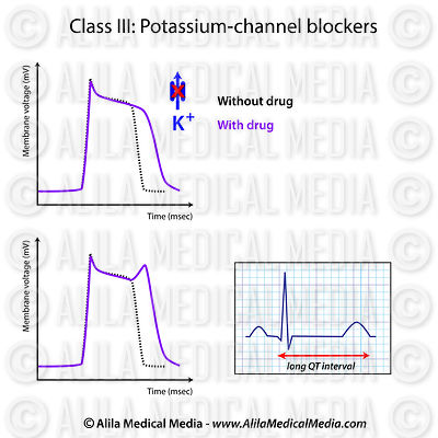 Action of potassium-channel blockers