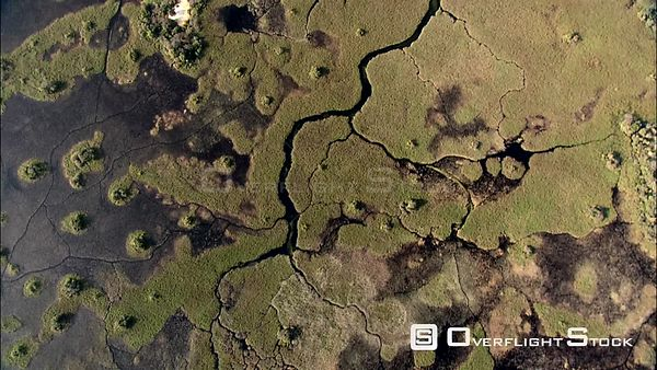 Aerial shot of the deep channels and pools in the Okavango Delta Okavango Delta Botswana Botswana