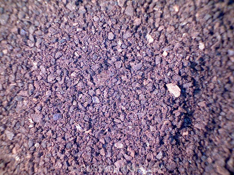 COFFEE: extreme close-up of finely ground coffee #3