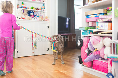 Dog playing tug of war with girl inpajamas2