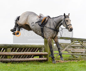 jumping a hunt jump at Stone Lodge Farm