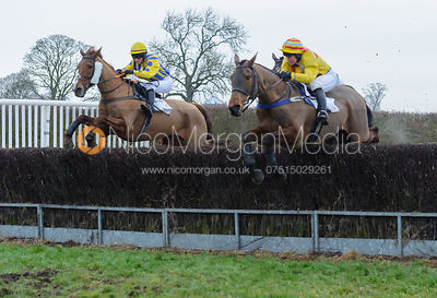 Race 6 - Ladies Open - Midlands Area Club Point-to-point 2017, Thorpe Lodge 29/1