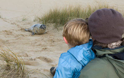 Young boy and mother looking at Grey Seal pup on Norfolk beach autumn
