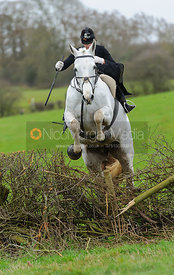 Amy Dowell and BOUNCE jump the last hedge of the Dianas of the Chase Cup