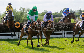 Race 4 Cawarden Holdings Mixed Open Race - Meynell and South Staffs at Garthorpe, 2nd June 2013