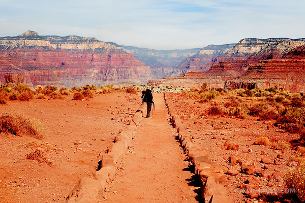 FEMALE HIKER WALKING SOUTH KAIBAB TRAIL IN GRAND CANYON NATIONAL PARK