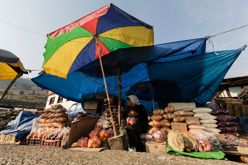 Woman Under Umbrellas at Morning Market